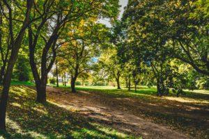 parc nature berlin